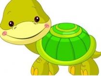 本命年梦见放生乌龟是什么意思